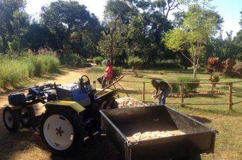 NAMINKANGO'S NEW FARMING AID