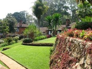 Homes in the Zomba community