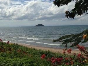 Lake Malawi with flowers and a beach in the foreground