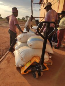 Workers moving maize